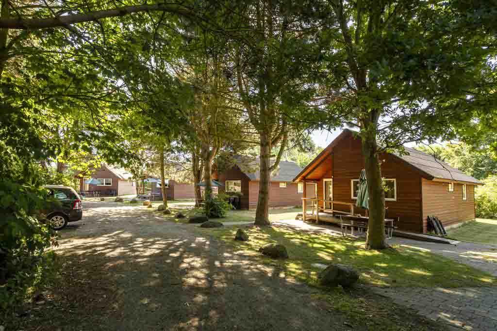 Petits cottages chaleureux en bois cachée dans la foret